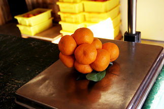 scale-mandarins1200px.jpg