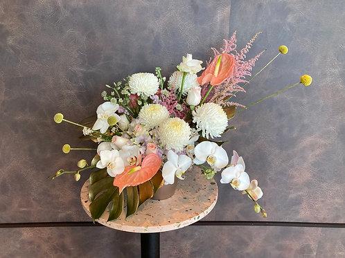 Phalaenopsis Centerpiece