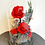 Thumbnail: Preserved Red Hot Rose Dome