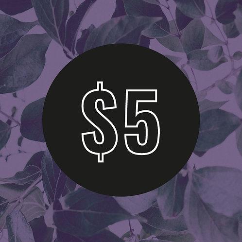 $5 Customisation