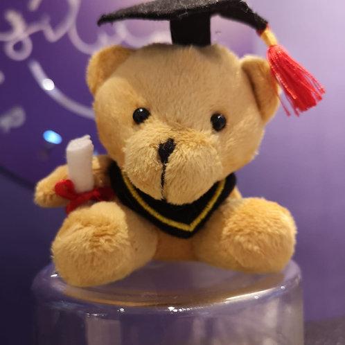 Graduation Bear Add On