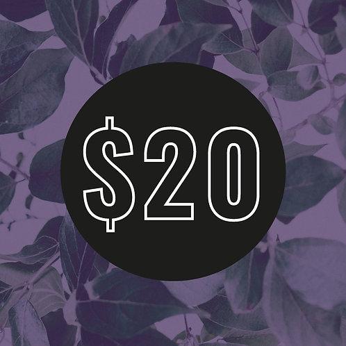 $20 Customisation