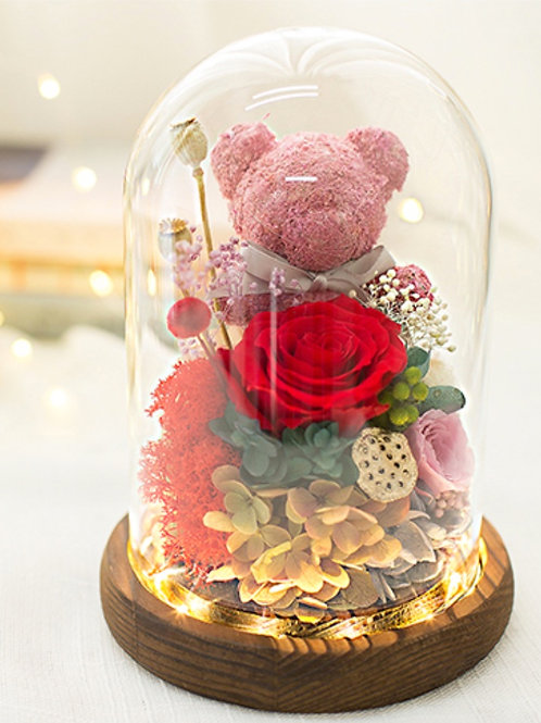 Preserved Moss Bear Dome - Red Rosy
