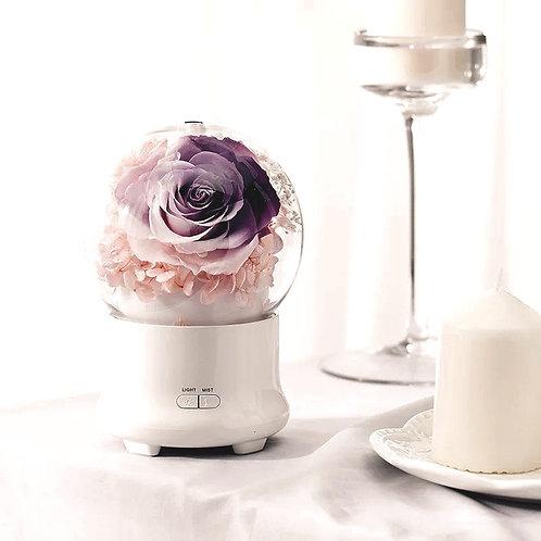 Preserved Floral Aroma Diffuser - Pinkish Glamilia