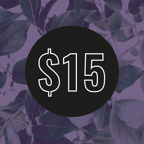 $15 Customisation