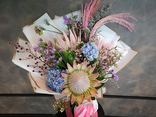 Ice Pink King Proteas Grande