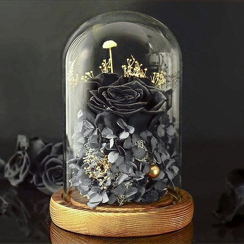 Preserved Floral Dome - Black Rose