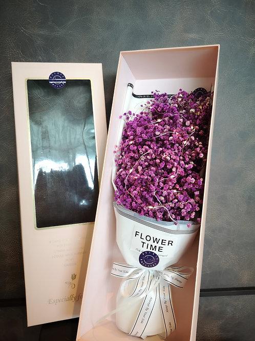 Preserved Purple Dream