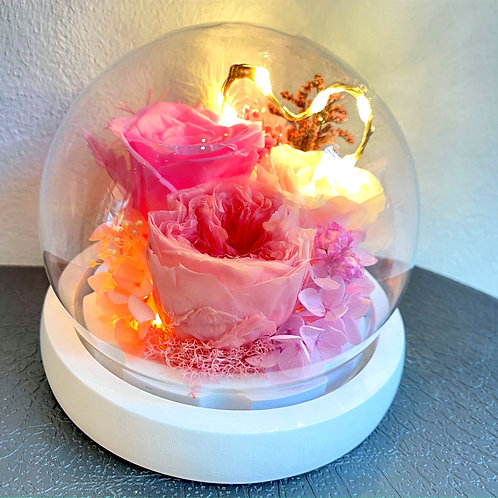 Preserved Floral Small Globe - Pink Heart