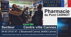 Pharmacie Pont Carnot 150dpi.jpg