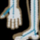 sistema ocho electrodos