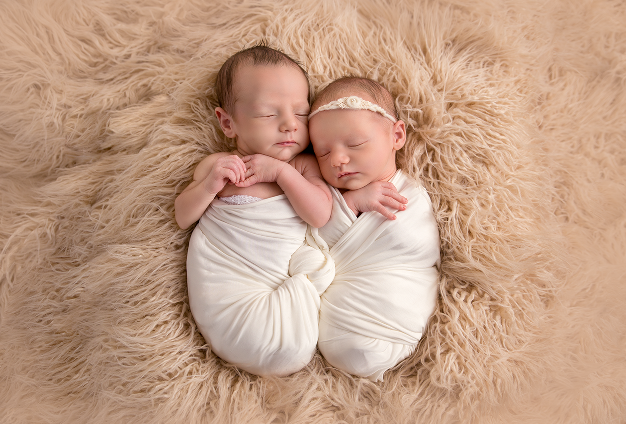 Josephine & Henry | Twin Newborn Portrait Session | Minneapolis-Cambridge, MN Newborn Photographer