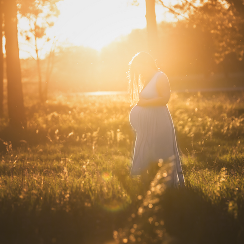 Minneapolis Maternity Photographer