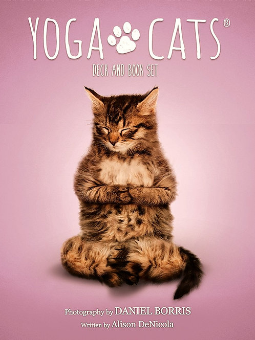 Yoga Cats Deck and Book Set