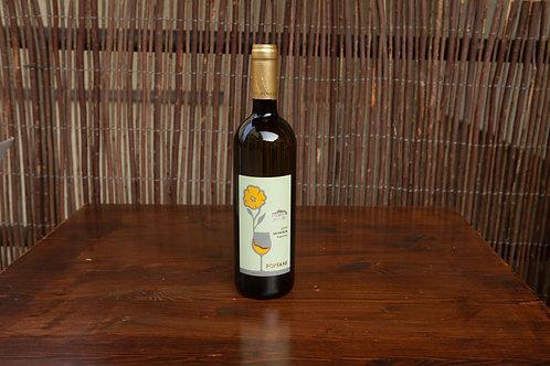 Sauvignon - Superiore doc (1 Flasche)