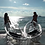 Thumbnail: Double Seat Transparent Kayak