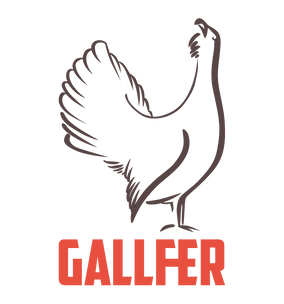 gallfer.png