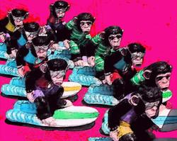 Surfing Monkeys