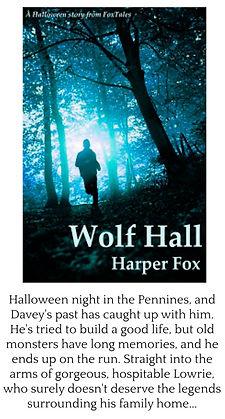 wolf hall framed.jpg