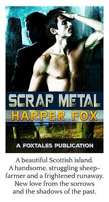 scrap metal framed.jpg