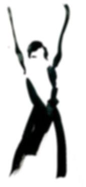flamenco dans encadrement (40cmx50cm)(4)