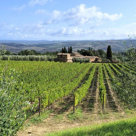 Montalcino & Brunello Wine