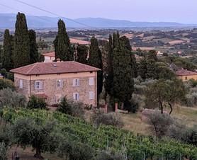 View of Cipresso e Pietra