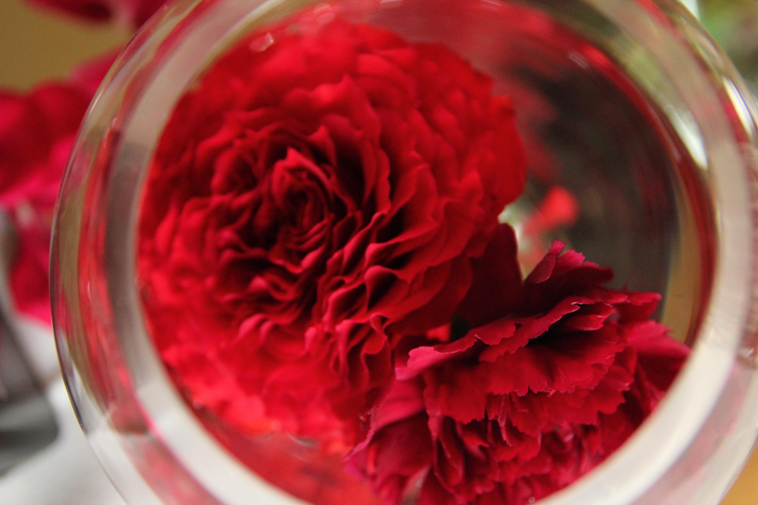 soliflore de roses rouge