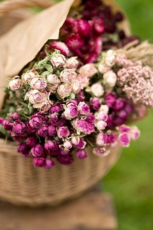 fleurs séchées.jpg