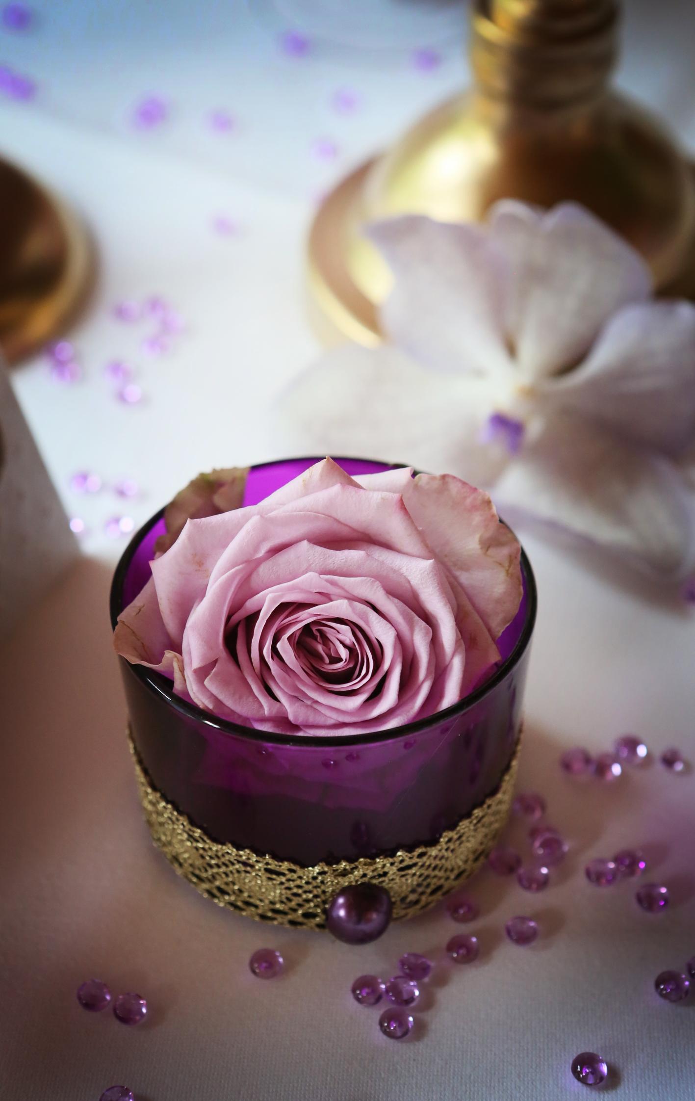 rose parme soliflore