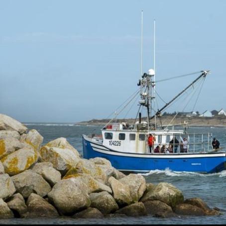 Controversy over a Treaty to Violent Conflict in Nova Scotia