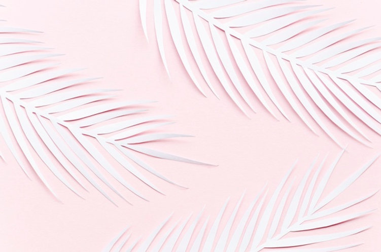 three-paper-palm-leaves-pink-table_23-21