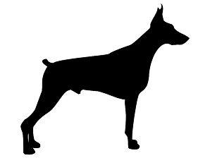 Hoeveel voeding hond per dag?