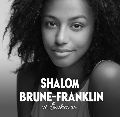 Seahorse_2_UK_Shalom-Brune-Franklin.jpg