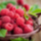 raspberries-727x485.jpg