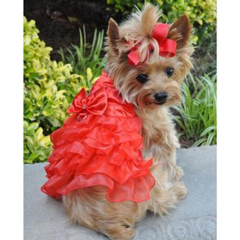 Red Satin Dog Harness Dress with lead