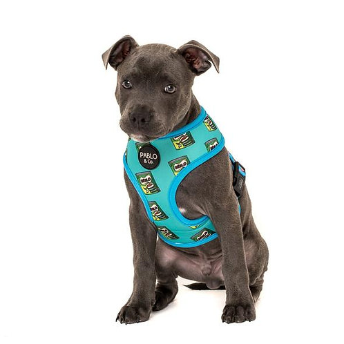 Pablo and Co Dog Reversable Harness Bubble O Bill & Milo - Size Large