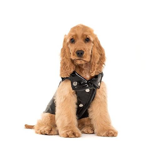 Dog Black Leather Jacket
