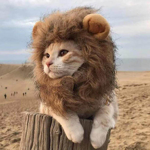 Cat Lion Mane Costume