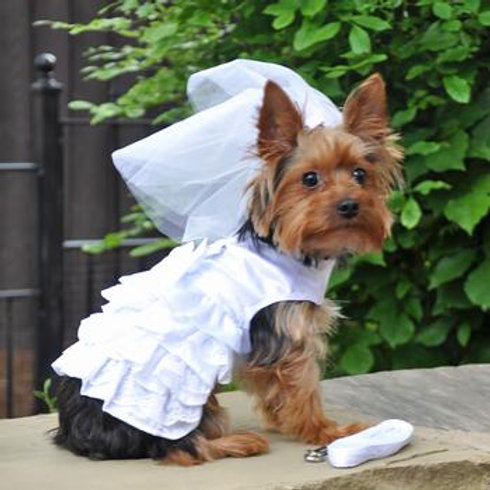 White Harness Wedding Dress with Veil and Leash