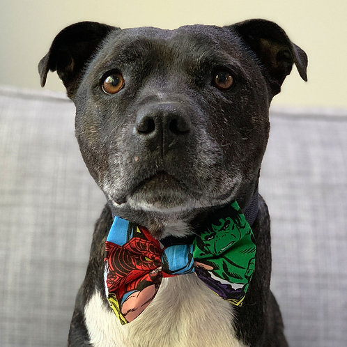 Dog Bow Tie - Avengers