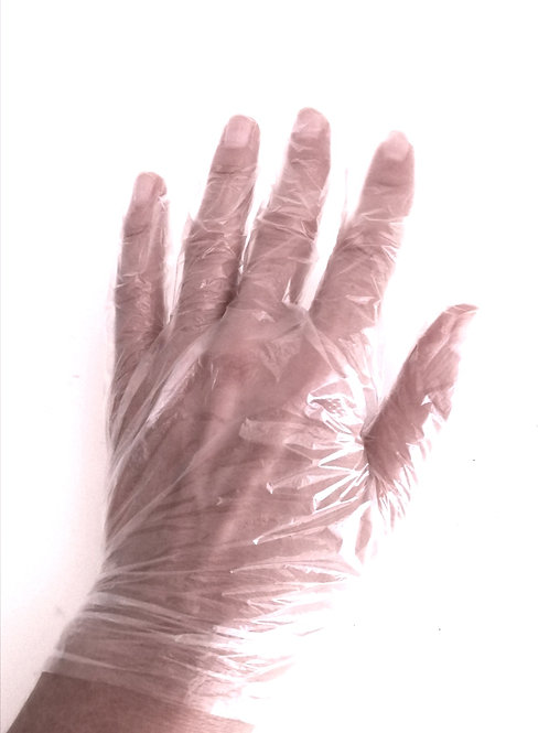 Disposable gloves - transparent / price per box from