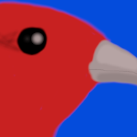 RedHippiProfile.png