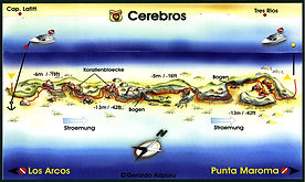 Cerebros map Playa del Carmen
