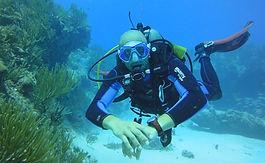Scuba diving in Playa del Carmen (MX)