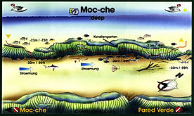Moc-Che deep map Playa del Carmen