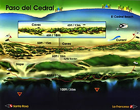 Mappa Paso del Cedral | Cozumel