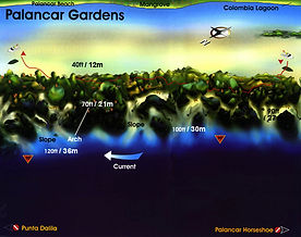 Palancar Gardens map Cozumel