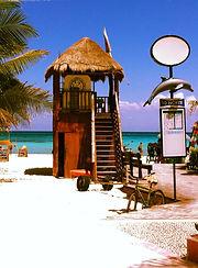 Immersioni Playa del Carmen | Scuba Planet Mexico