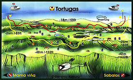 Tortugas map Playa del Carmen